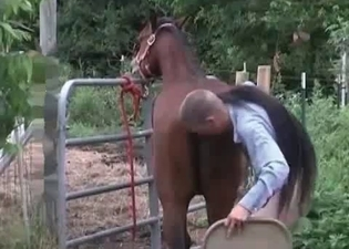 Ass fucking session on a farm